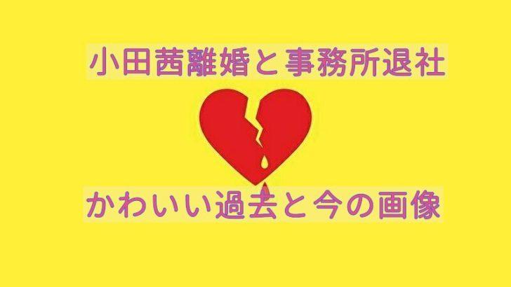 小田茜離婚と今の画像