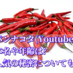パンナコタ(Youtube)の本名や年齢は?人気の秘密についても!